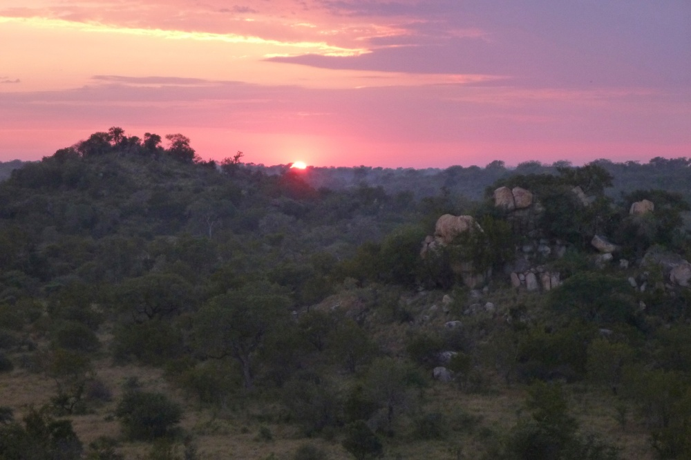 sunrise in the bush veld