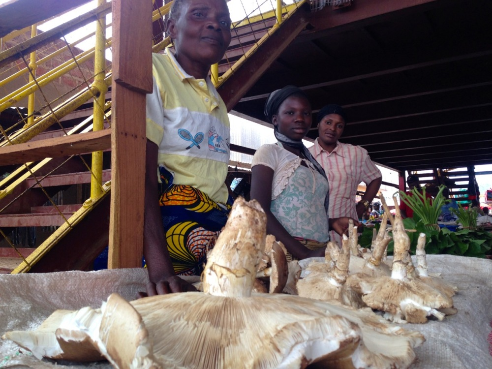Women selling mushrooms.