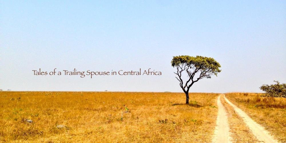 academic trailing spouse