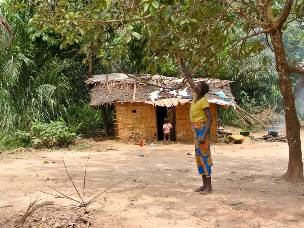 Scenes of village life...
