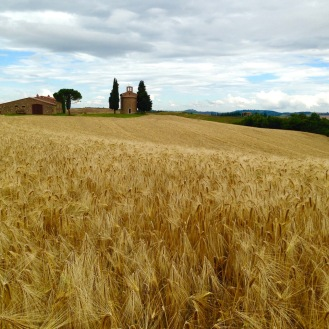 June 2016: One of many beautiful Tuscan scenes, this one during one of our hiking days